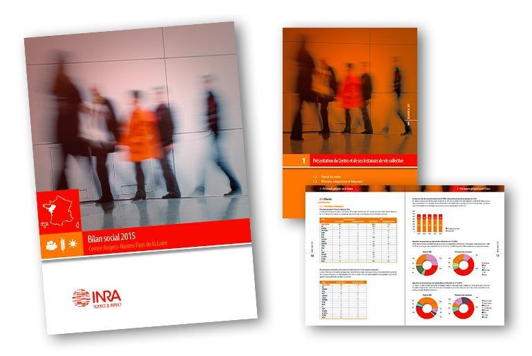 rapport d'activité INRA